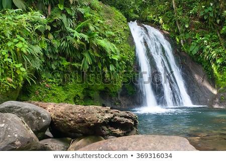 belo · cachoeira · floresta · surpreendente · rápido · água - foto stock © capturelight