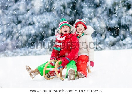 Crianças trenó ilustração homem esportes neve Foto stock © adrenalina