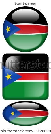 Sudan banderą owalny przycisk srebrny odizolowany Zdjęcia stock © Bigalbaloo