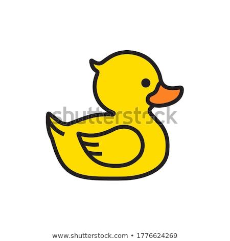 Duck line icon. Stock photo © RAStudio