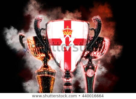 Trophy cup textured with flag of Northern Ireland. 2D Digital illustration Stock photo © Kirill_M