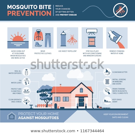 Mosquito Disease Stock photo © Lightsource