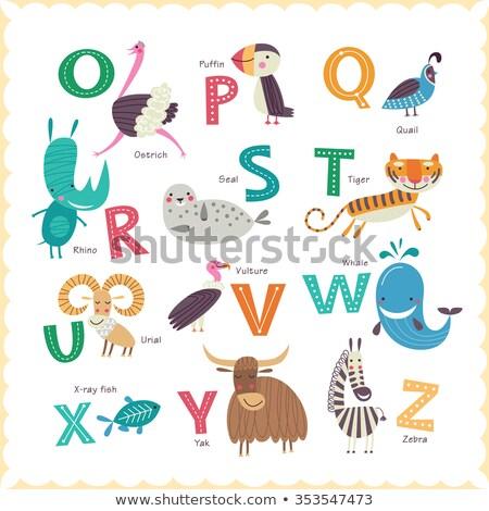 çocuklar vektör hayvanat bahçesi alfabe hayvanlar örnek Stok fotoğraf © natalya_zimina
