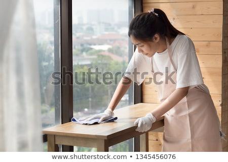 女性 家 ヘルパー 実例 白 科学 ストックフォト © bluering