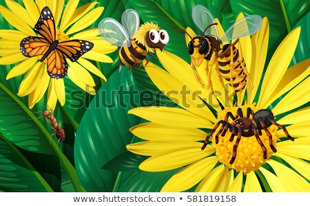 Different types of bugs flying around yellow flowers Stock photo © bluering