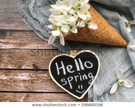 весны здесь каллиграфия чернила щетка изолированный Сток-фото © Anna_leni