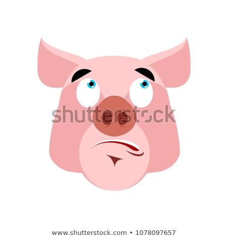 Pig surprised Emoji. piggy astonished emotion on white backgroun Stock photo © popaukropa