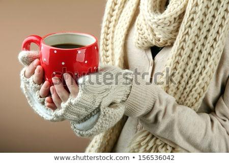 Mooie vrouw drinken warme drank winter park sneeuwval Stockfoto © dariazu