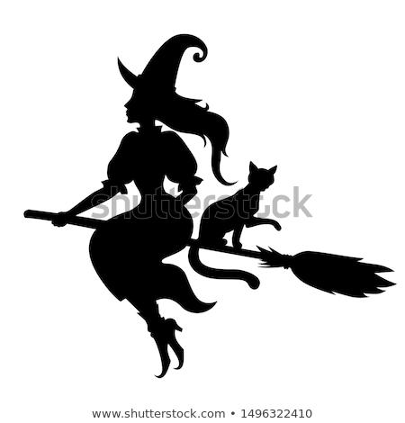 Halloween heks kat bezemsteel vriendelijk cartoon Stockfoto © Krisdog