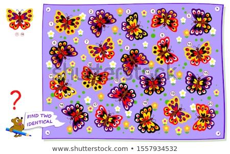 Talál azonos pillangók játék gyerekek feladat Stock fotó © Olena