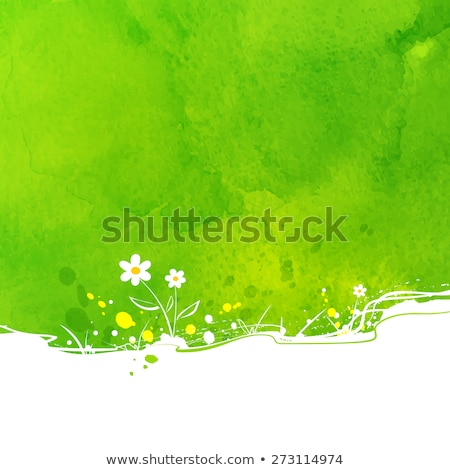 primavera · jardín · brillante · primavera · hierba - foto stock © janpietruszka
