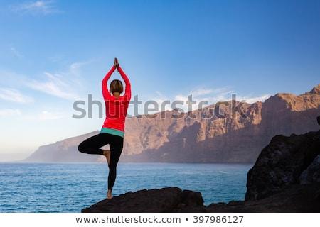sziluett · női · meditál · kő · tenger · nő - stock fotó © blasbike