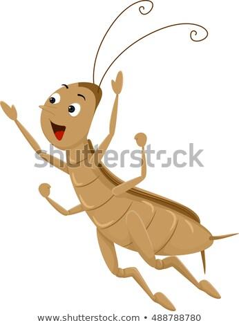 талисман крикет долго Перейти животного иллюстрация Сток-фото © lenm