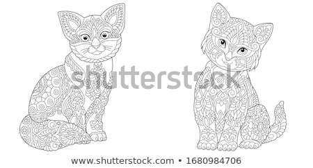 два кошек красочный Лапы лапа украшенный Сток-фото © blackmoon979
