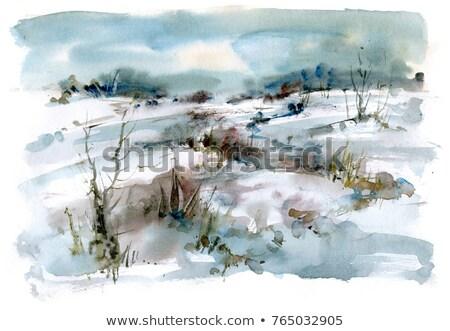 Nyírfa fa erdő folyam hó tél Stock fotó © IS2