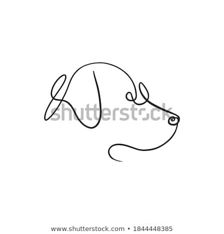 Logo köpek siyah beyaz avcılık stil aile Stok fotoğraf © Vicasso