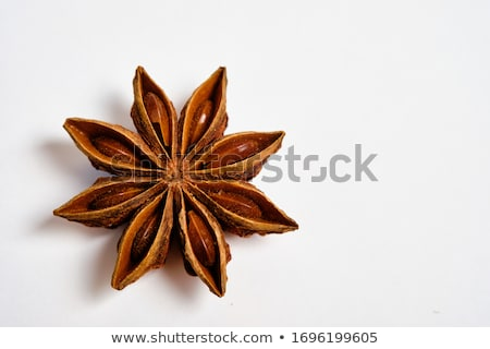Anise star spice closeup background Stock photo © boggy