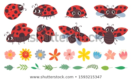 Ladybug Cartoon Character Mascot Design stock photo © ridjam