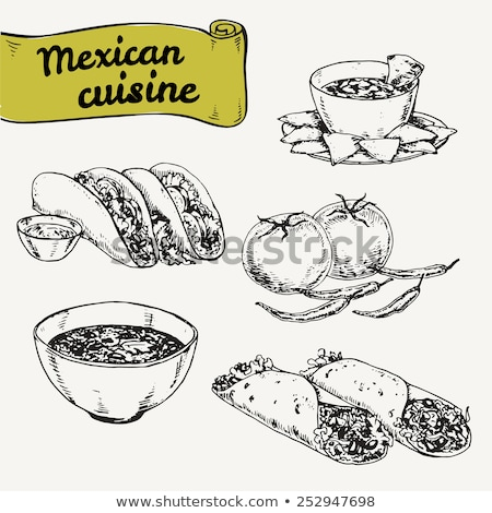 Noodle and Mexican Burrito Vector Illustration Stock photo © robuart