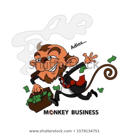 Karikatür gülen hırsız şempanze grafik Stok fotoğraf © cthoman