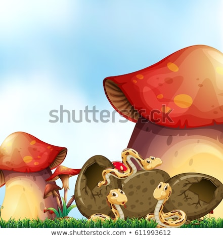 Giardino scena tre serpenti funghi illustrazione Foto d'archivio © colematt