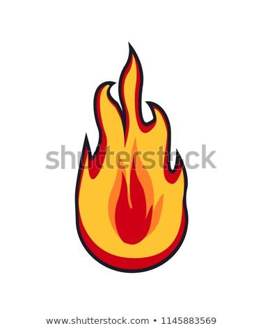 Fire Patch Closeup Logotype Vector Illustration Stock photo © robuart