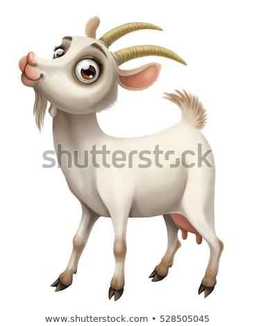 Cartoon Goat Love Stock photo © cthoman