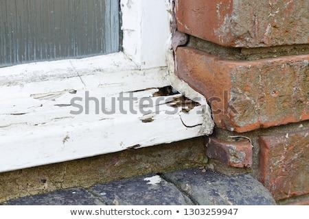 Bois maison mauvais état illustration bâtiment Photo stock © colematt