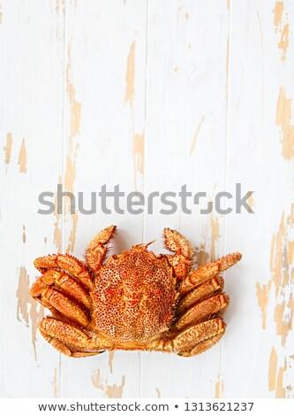 Foto stock: Um · cozinhado · caranguejo · rústico · branco