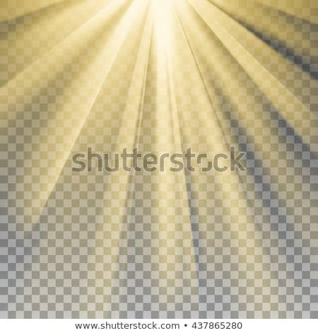 ベクトル 太陽 光 レンズ 黄色 フレア ストックフォト © netkov1