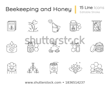 Beekeeper with Bees, Honey Making Business Vector Stock photo © robuart