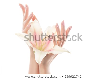 Hand skin care. Closeup of beautiful woman hands with light manicure on nails . Cream for hands and  Stock photo © serdechny