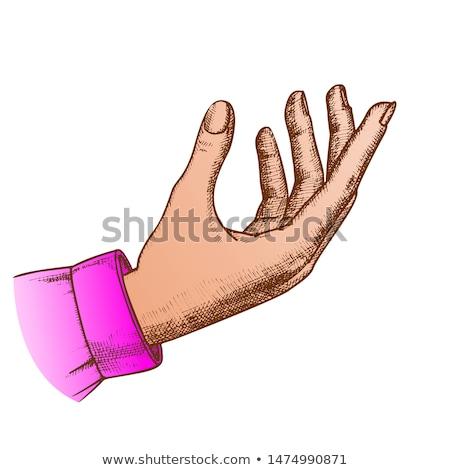 Lány kézmozdulat tart hegedű vektor nő Stock fotó © pikepicture