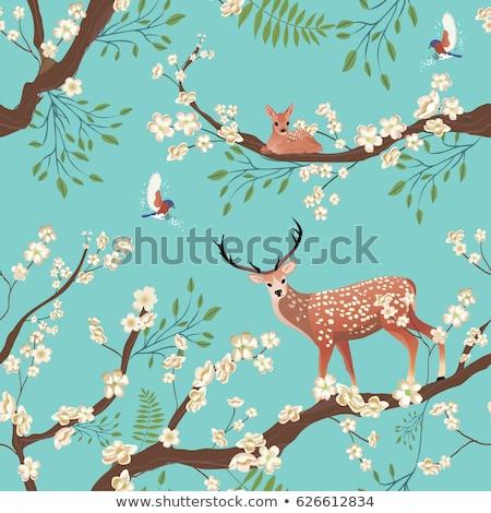 Sakura Asya ağaç Retro Stok fotoğraf © pikepicture
