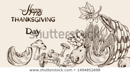 Happy Thanksgiving dinner menu line art Vector. Fall havest veggies detailed illustrations Stock photo © frimufilms