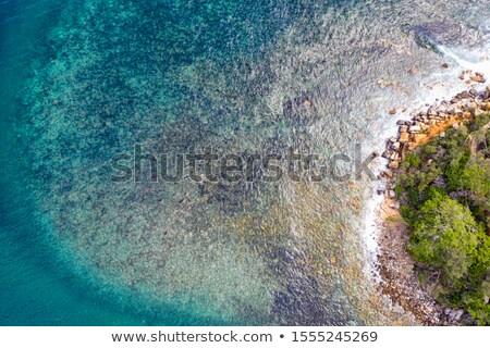 Rocky coastal reef patterns scenic view Stock photo © lovleah