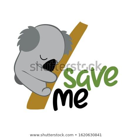 Mettre moi Koala soutien faune personnes Photo stock © Zsuskaa