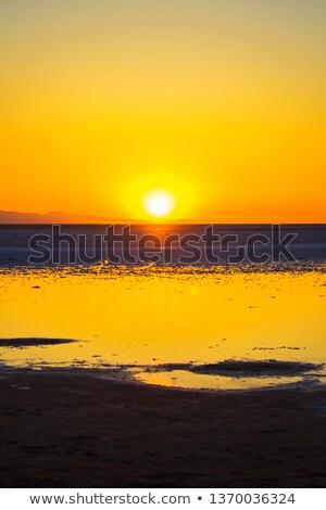 Słony pustyni Tunezja świcie Świt artystyczny Zdjęcia stock © Arsgera