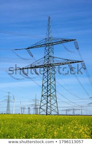 природы области зеленый промышленности Сток-фото © elxeneize