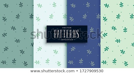cute small leaves pattern in four color shades Stock photo © SArts