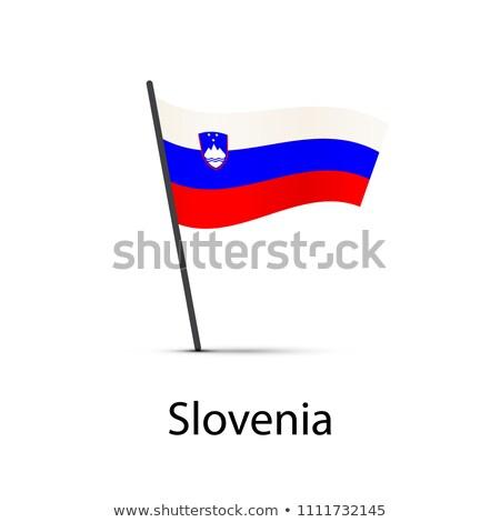 Slovenia bandiera polo infografica elemento bianco Foto d'archivio © evgeny89