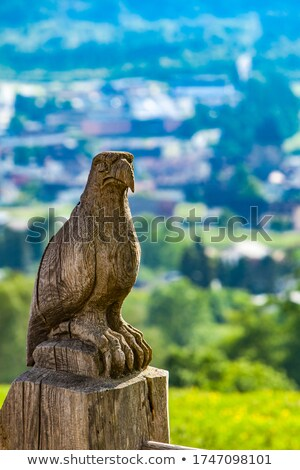 Águia cerca Suíça tradicional madeira Foto stock © boggy