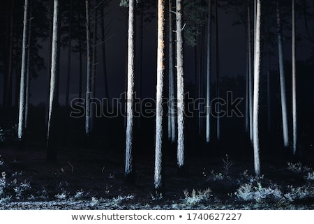 кирпичных · зима · покрытый · льда - Сток-фото © ansonstock