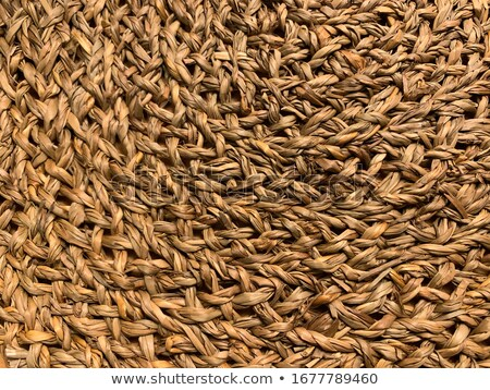 basketry traditional interlaced dried texture Stock photo © lunamarina