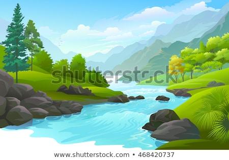 wooded stream with many rocks stock photo © balefire9