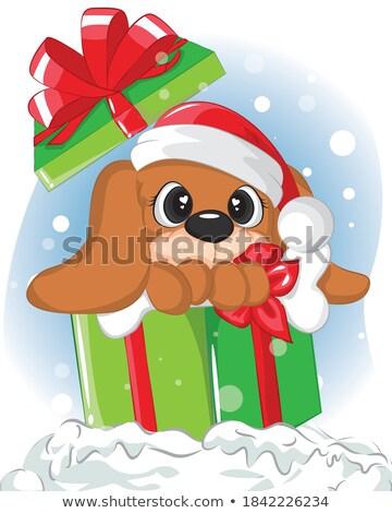 サンタクロース · 犬 · 現在 · 帽子 - ストックフォト © galyna