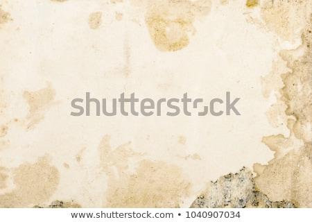 Régi könyv történelmi kamera fehér könyv film Stock fotó © pterwort