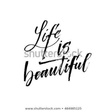 belo · vida · flor · velho · mão - foto stock © gaudiums