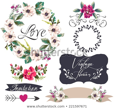 набор ретро цветочный Баннеры любви аннотация Сток-фото © AnnaVolkova