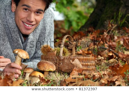 Man gathering mushrooms and chestnuts in the forest Stock photo © photography33